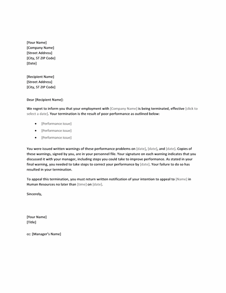 Employee Termination Letter Word Format Sample Template free download