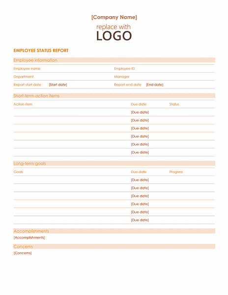 02 Employee Status Report Template Word