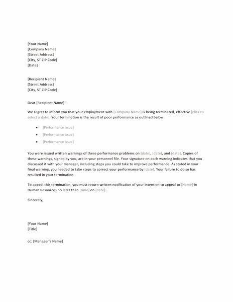 02 Employee Termination Letter Word Format Sample Template  Employee Termination Template